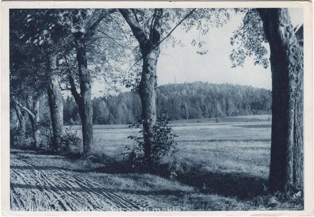 Letonika.lv. Multivide - Sendienu Latvija attelos. Zilais kalns